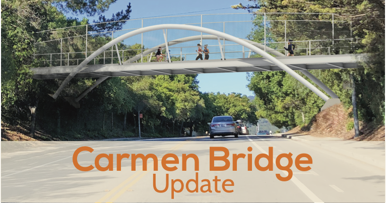 Carmen Bridge feasibility study approved by council!